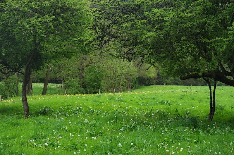 Bocage Normand randonnée souleuvre