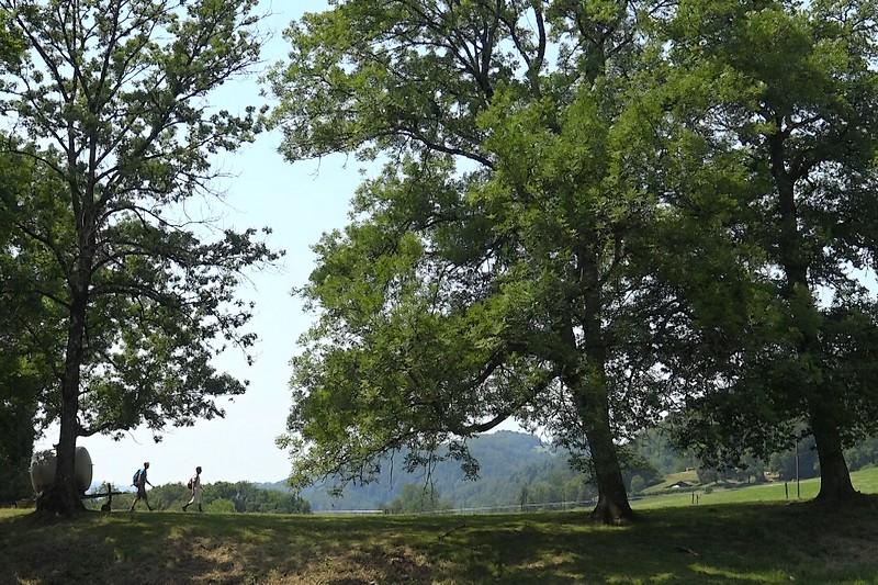 De jolis instants de randonnée en campagne attendent le randonneur sur le Colporteur
