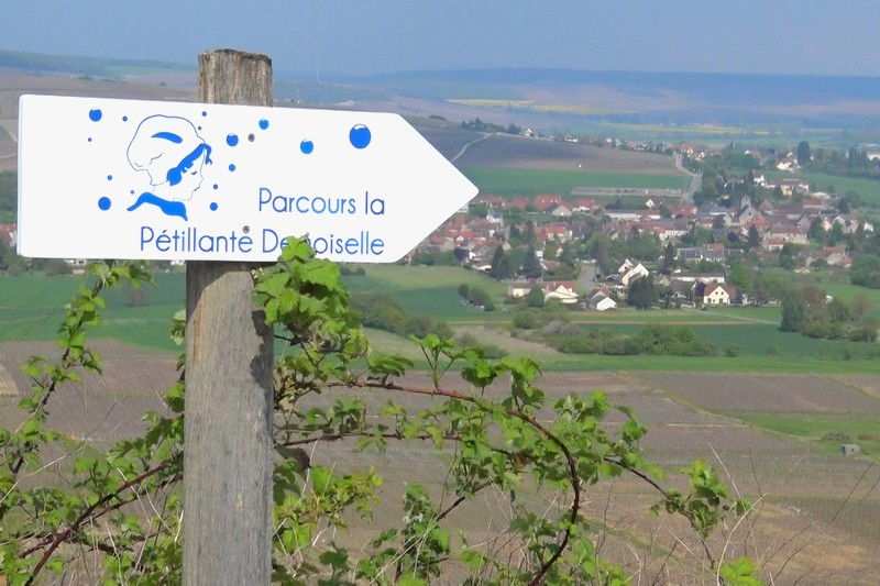 Trélou-sur-Marne : c'est là-bas le départ, ainsi que le montre le panneau !